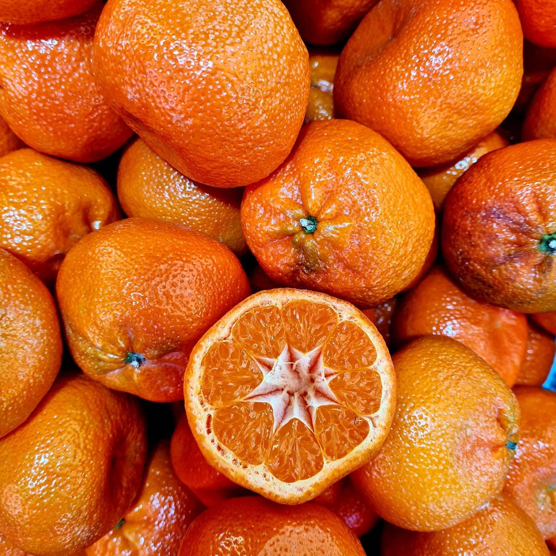 Na Trhovisku Miletičova sú už v predaji mandarínky bez kôstok